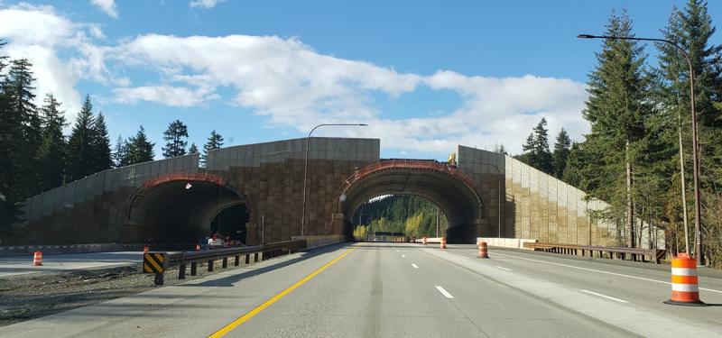 I-90 animal bridge overpass coyote crossing